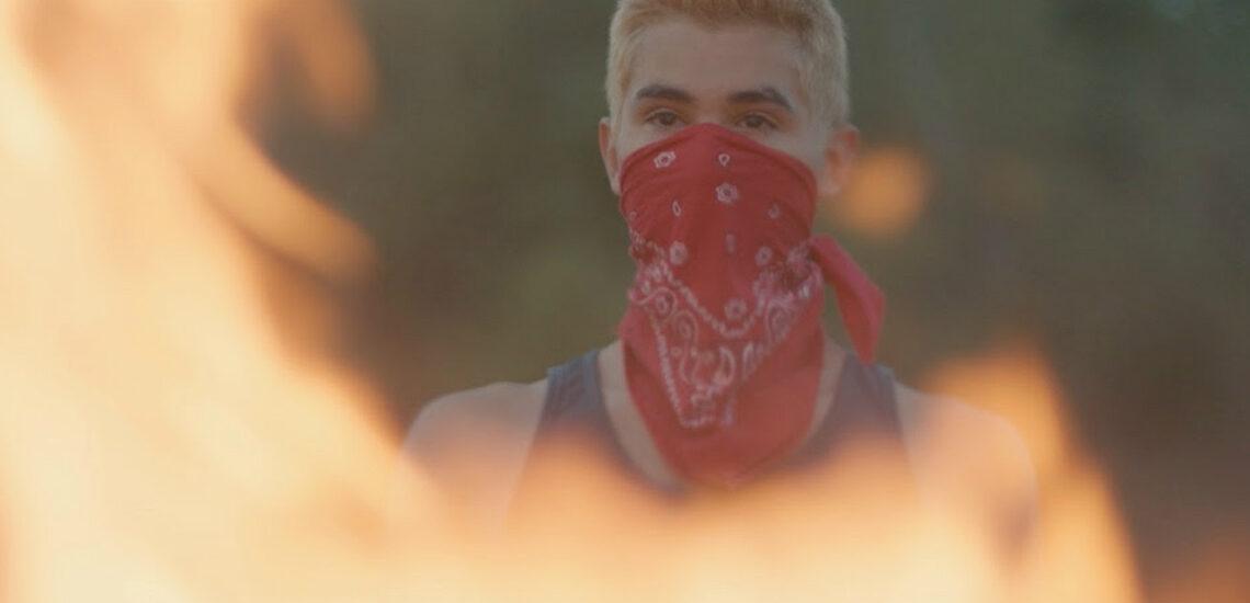 wildfireImage